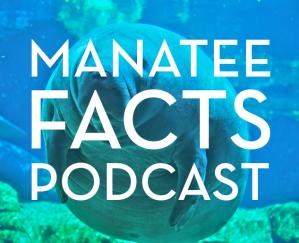 manateefactspodcast